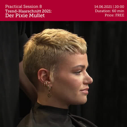 Pixie Mullet practical Session 8.jpg